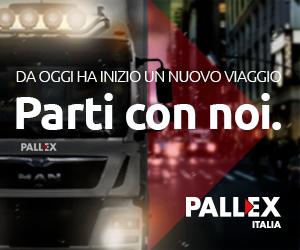Pallex square dal 15 luglio 2017 al 15 gennaio 2018